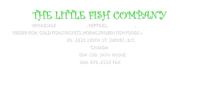 THE LITTLE FISH COMPANY WHOLESALE TROPICAL FISH, REPTILES